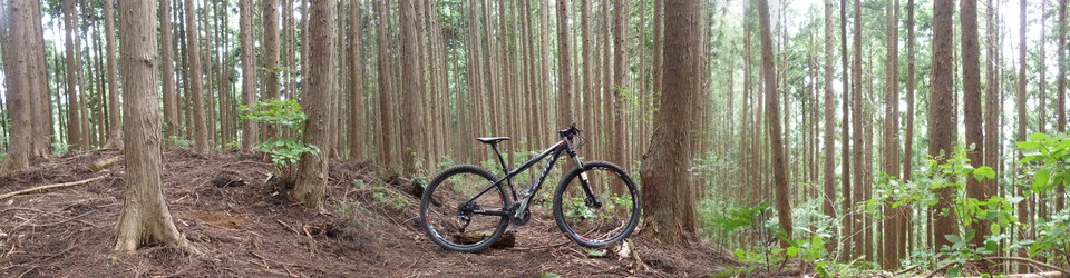 われらがWFR★早稲田大学山岳自転車部